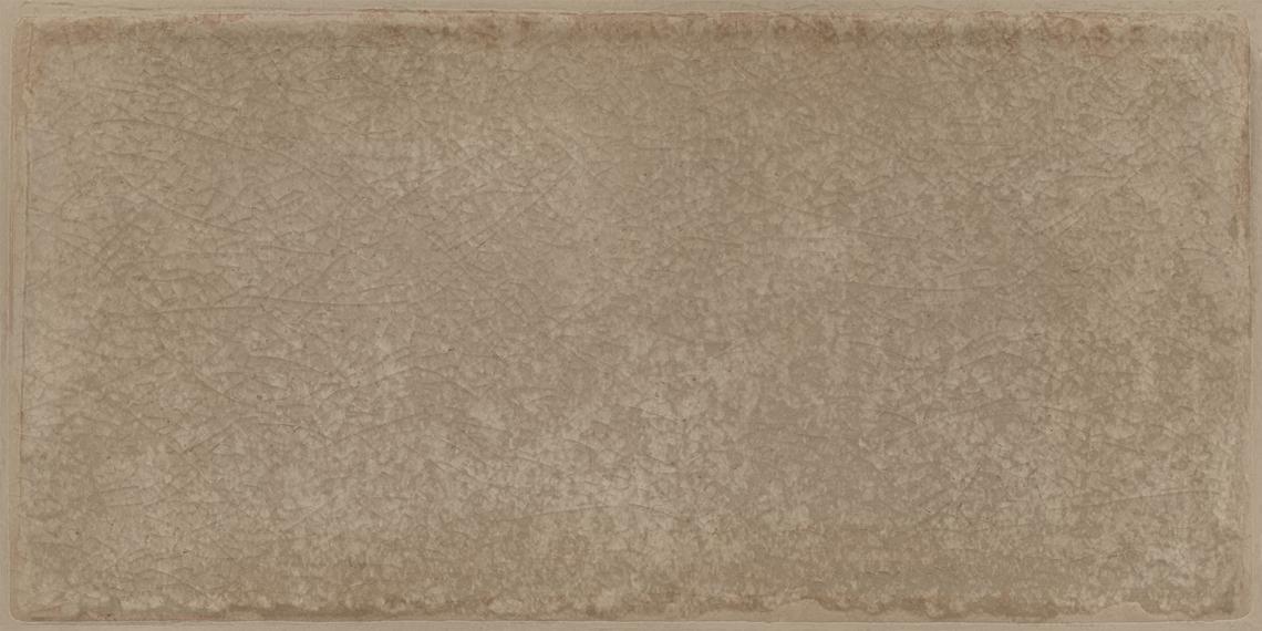 ROSEMARY VISON SHINY (12,5x25)
