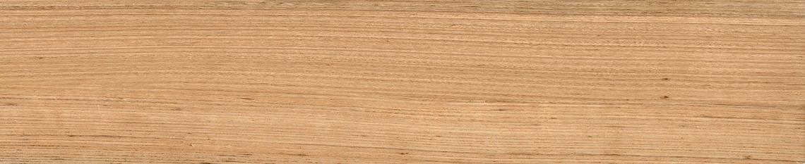 TASMANIA NATURAL MATT (23x120)