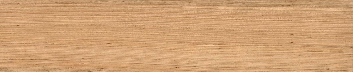 TASMANIA NATURAL GRIP (23x120)
