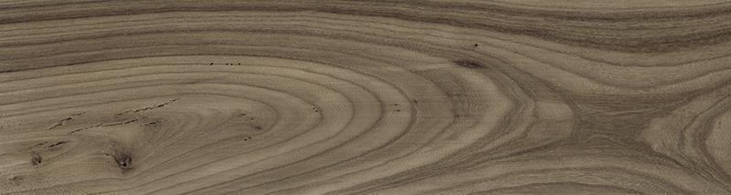 SONORA EBONY (C) (22x84)